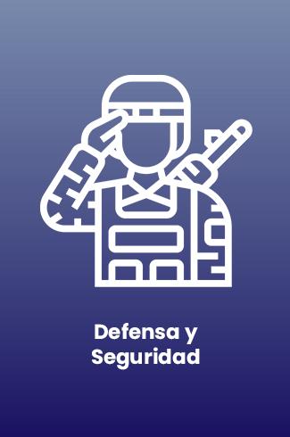 Defensa y Seguridad